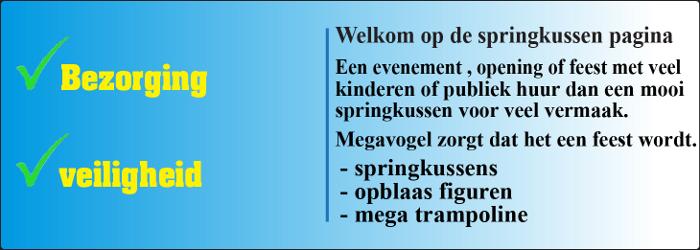 megavo_intro_springkussens